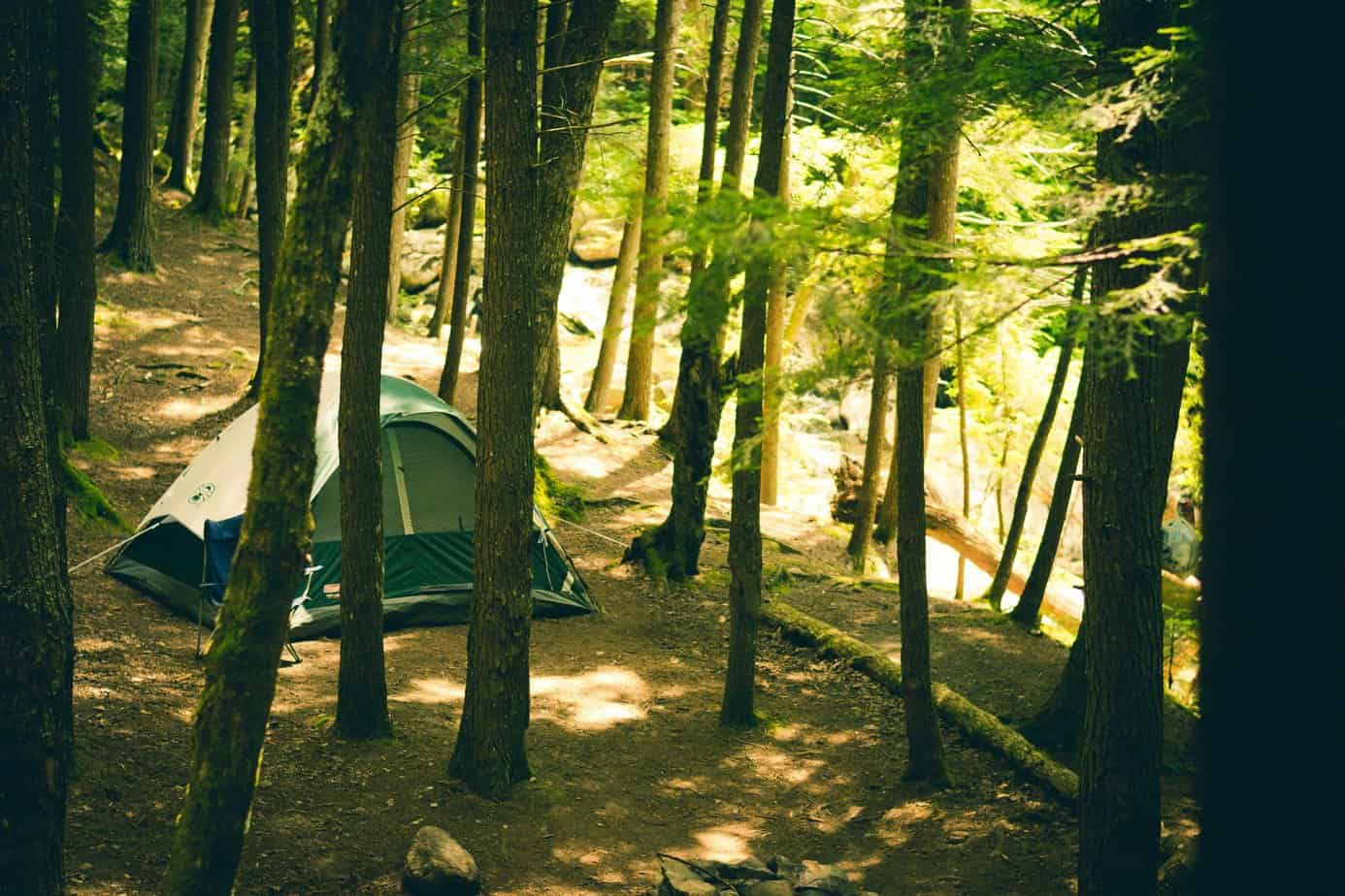 tent in the forest
