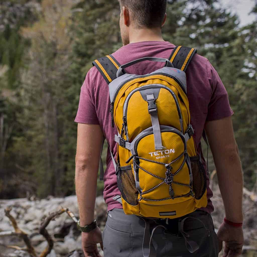 Teton sports oasis 1100 backpack - photo 1