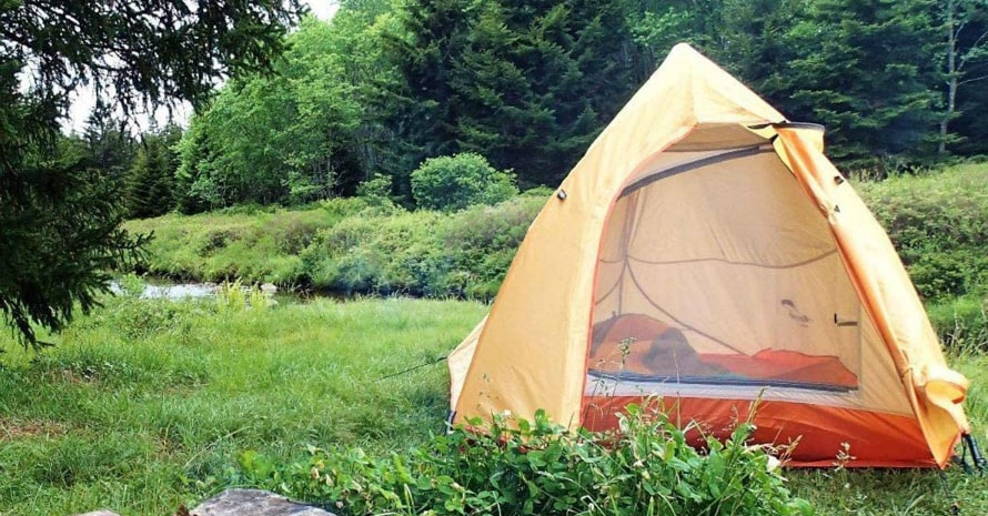 Naturehike Backpacking Tent in forrest
